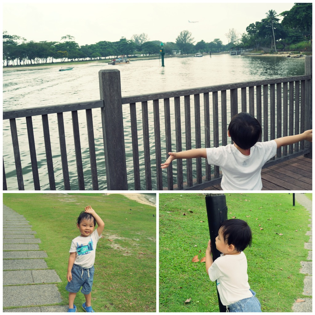 Pasir Ris Park And Changi Coastal Walk